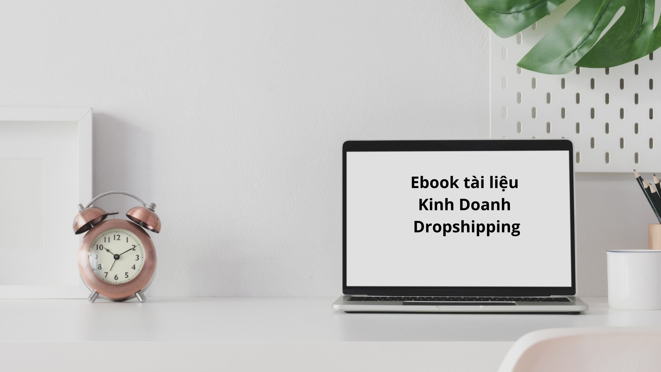 Read more about the article Ebook Tài Liệu Kinh Doanh Dropshipping